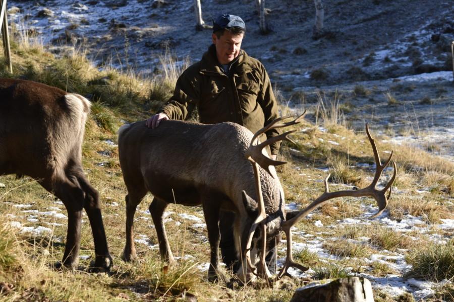 Rentierzüchter Leif Jåma, Norwegen