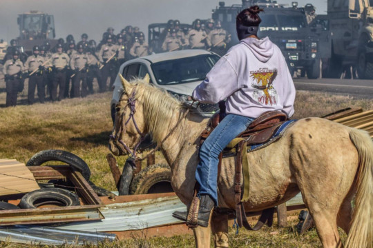 An indigenous activist on his horse confronts security forces at a Standing Rock manifestation.