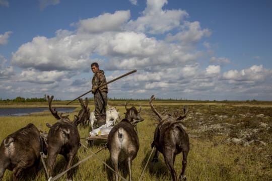 An indigenous reindeer herder on the Taimyr Peninsula.