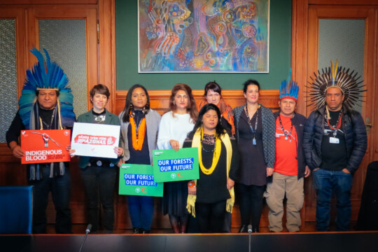 Bern, November 2019: Indigenous delegates from Brazil meet Members of Parliament