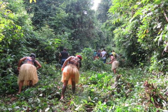 La démarcation est un travail difficile. Elle s'étend sur toute la jungle dense - mais les Mundurukú connaissent extrêmement bien la forêt amazonienne.