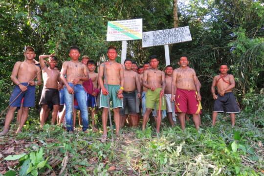 Pour rendre visibles les limites de leur territoire, les indigènes marquent les arbres avec les initiales de leur peuple ou y apposent des signes - malheureusement, les intrus détruisent sans cesse ces marquages.