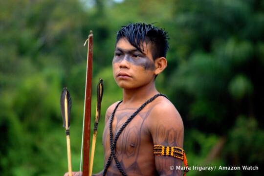 De nombreux indigènes se parent encore de la peinture corporelle traditionnelle de leur peuple. Il existe une variété de motifs et de symboles, chacun ayant sa propre signification. Photo: Maira Irigaray/Amazon Watch