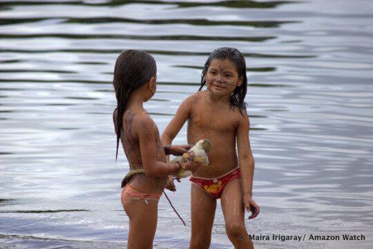 La forêt tropicale et les rivières donnent au Mundurukú tout ce dont il a besoin pour vivre. Ils vendent ou échangent l'excédent. Photo: Maira Irigaray/Amazon Watch