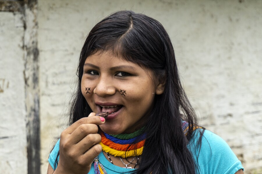 A Yanomami girl eats a piece of chocolate